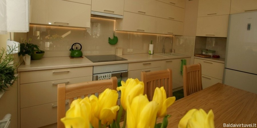 Virtuvės baldai su stiklo sienele