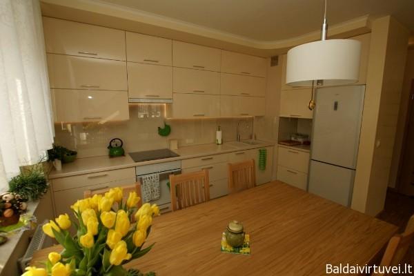 Virtuvės baldai su dažytais MDF fasadais